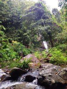2015 10 Fiji Waterfall Hike 29
