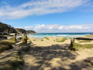 3WT 2016-03-22 Mckenzie Beach  545
